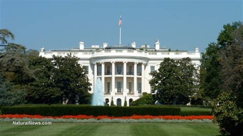 Obama issues more executive memoranda than any other