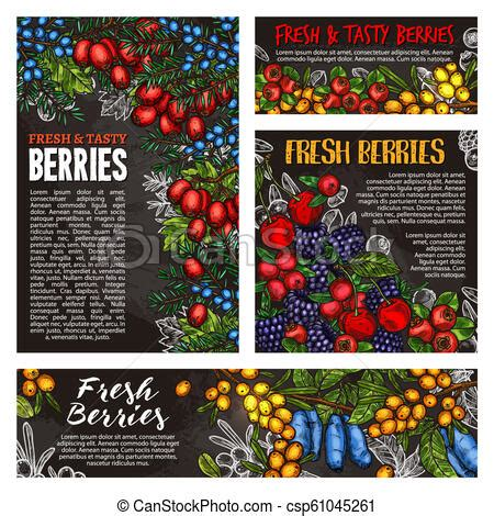 Wild forest and farm berry fruits