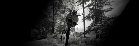 The Forest (PS4 / PlayStation 4) News, Reviews, Trailer