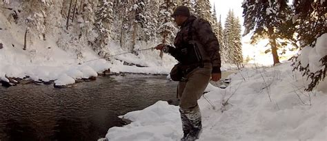 Colorado Winter Fly Fishing Guide | Where to Fish & What