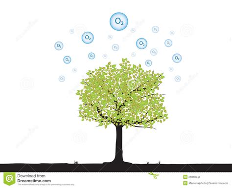 Tree With Oxygen Royalty Free Stock Photos - Image: 26018248