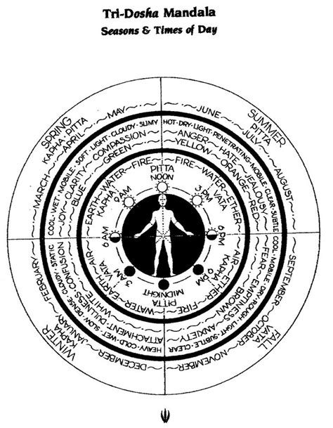 the Tri-Doshas, the Body-Types within each of us, is from