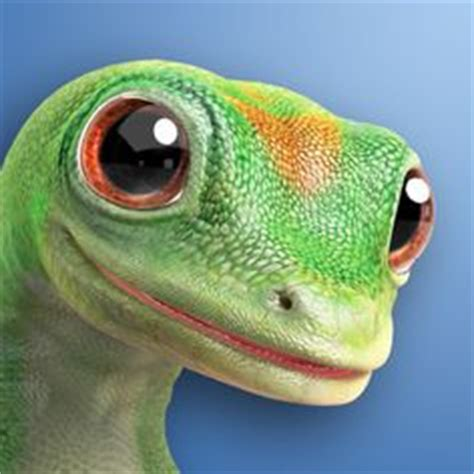 Geico Gecko on Pinterest | Geckos, Advertising and Speed Boats