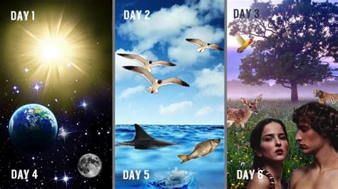Days of Creation Song - YouTube