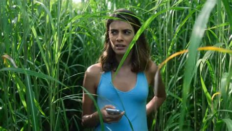 Review: In the Tall Grass is a creeper but it won't make