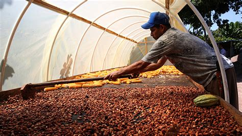 The Future of Food: Maximizing Finance for Development in